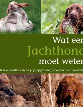 vos_wat_een_jachthond_moet_weten