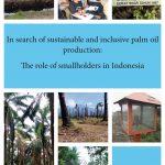palm oil production